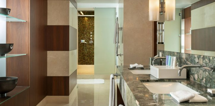 ambassador-suite-bathroom-2