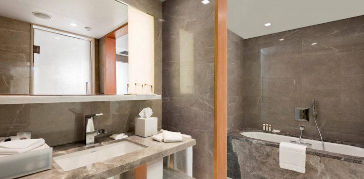 deluxe-suite-bathroom-1-2